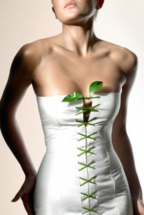 как похудеть или особенности диеты для женщин